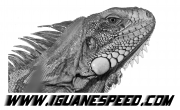 Iguane Speed